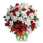 flores_CentroShopOnline